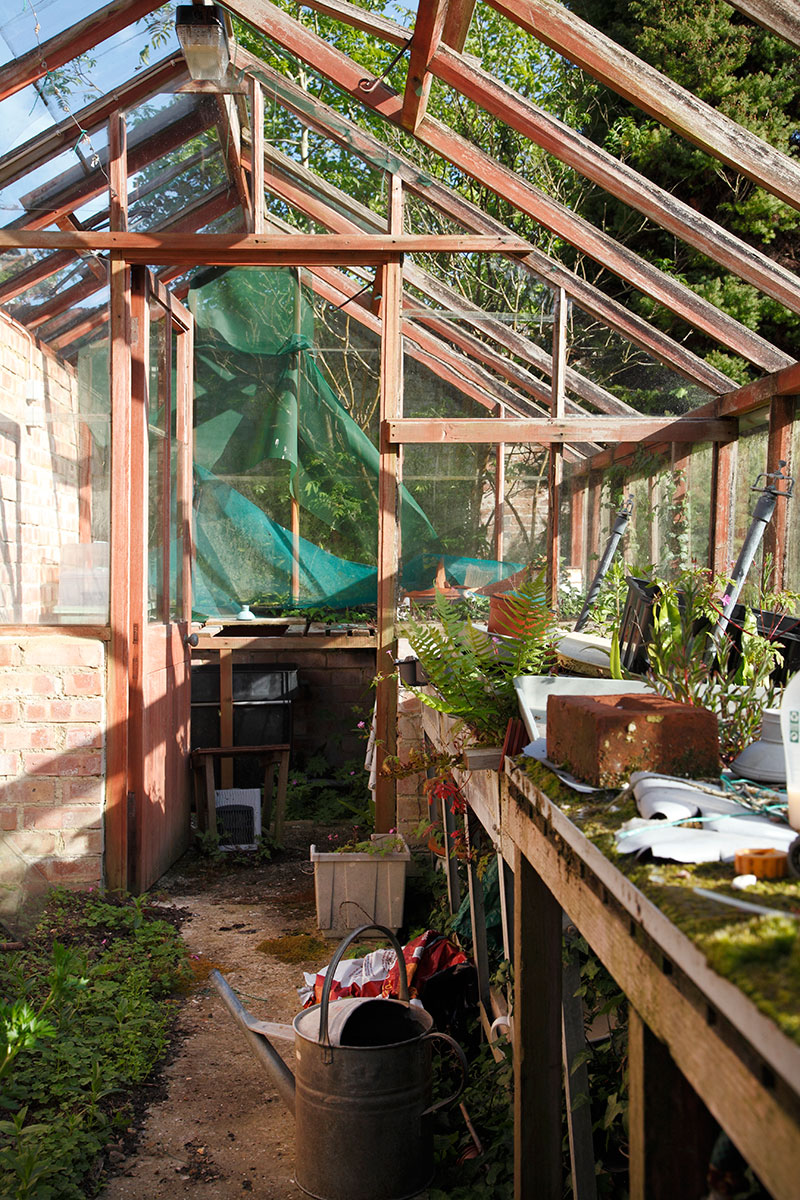 The greenhouse once bursting with tomatoes and other produce, has seen better days.
